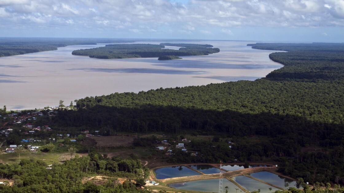 """Guyane : la justice enjoint l'Etat de """"prolonger"""" les concessions controversées de Montagne d'or"""