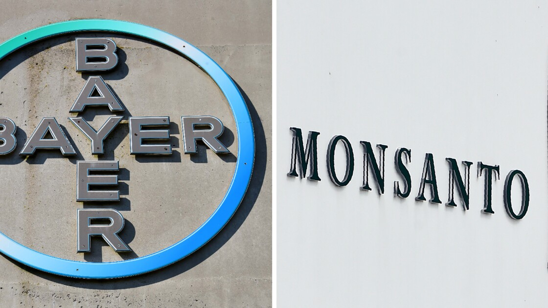 Bayer mise sur l'agriculture intensive en croquant Monsanto