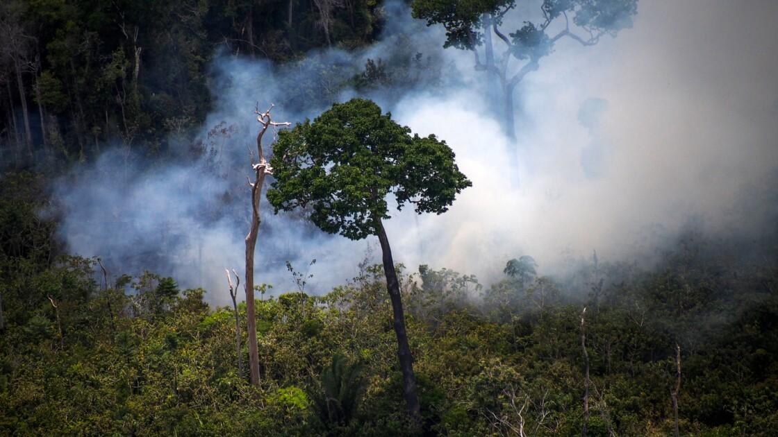 Amazonie: des millions d'hectares de forêt ouverts à l'exploitation minière