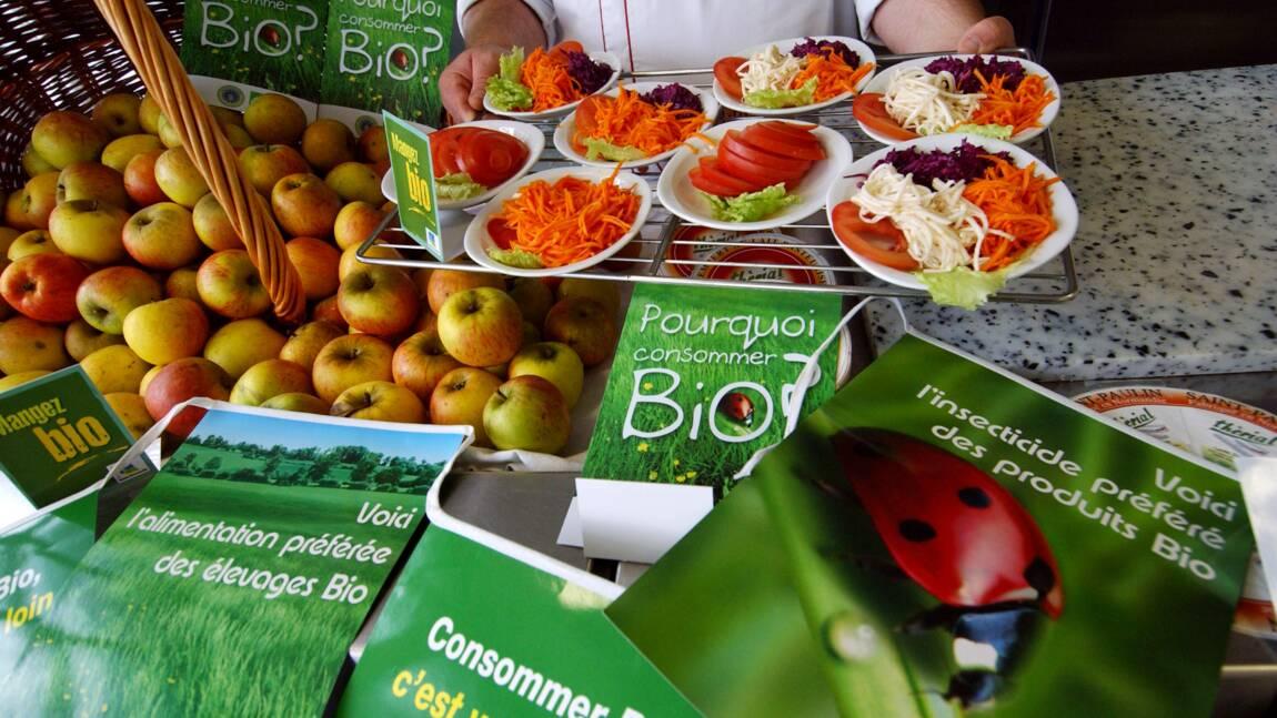 """Les députés prolongent en commission """"l'aide au maintien"""" des agriculteurs bio"""