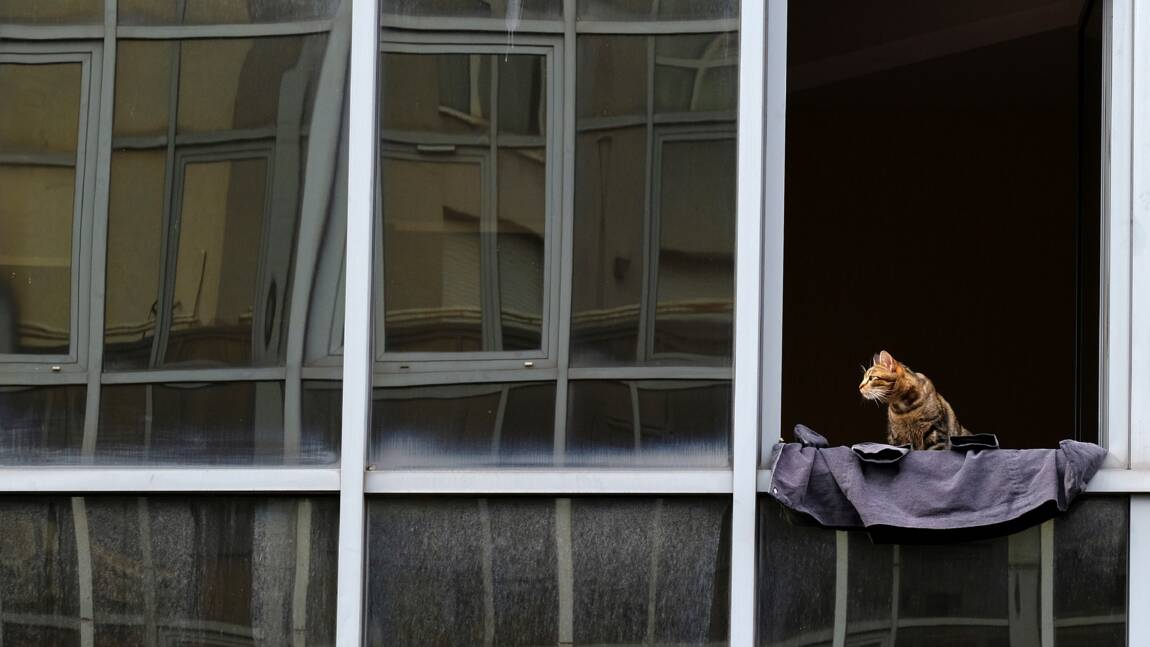 Les portes et fenêtres sorties du crédit d'impôt énergétique