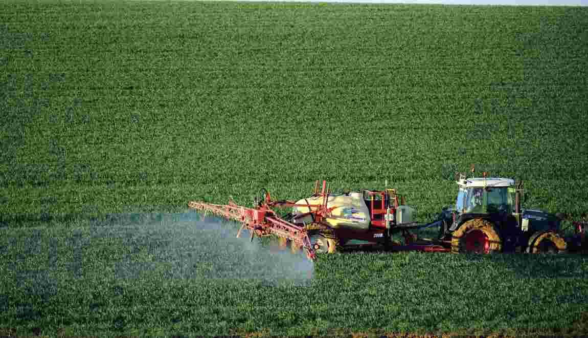Produits phytosanitaires: plusieurs acteurs jugés à Marseille pour tromperie