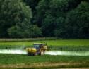 Pesticides: les céréaliers peuvent mieux faire
