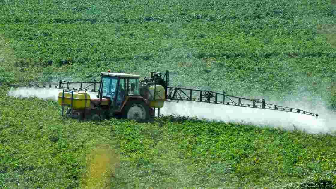 """Glyphosate: l'ONG Générations futures réclame un """"éclaircissement rapide"""""""