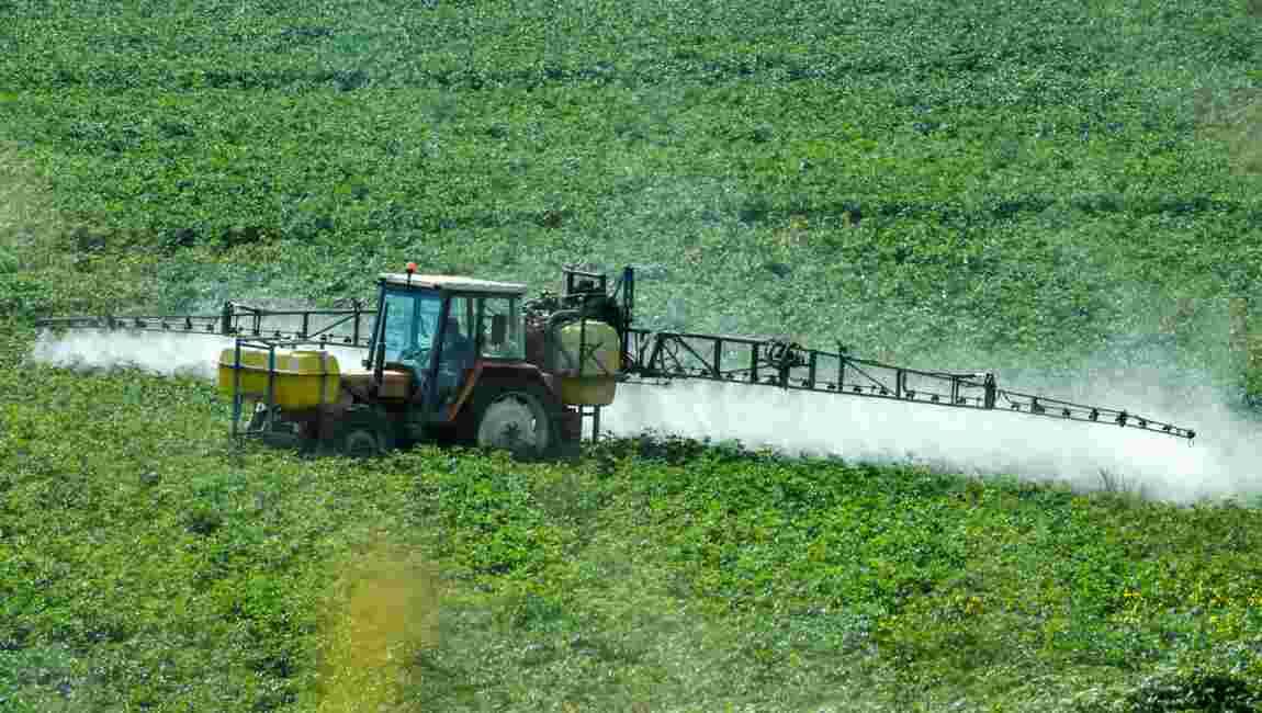 """Glyphosate: Travert évoque une prolongation de """"5 à 7 ans"""" au lieu de 10"""
