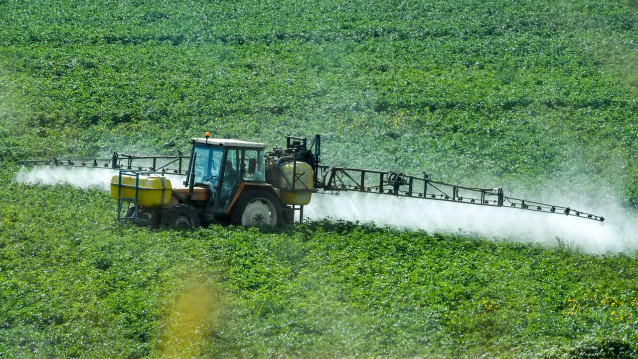 """Glyphosate: 54 députés LREM demandent une interdiction """"le plus rapidement possible"""""""