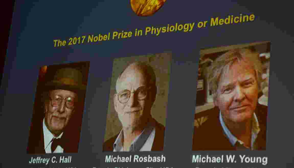 Nobel de médecine: trois spécialistes américains de l'horloge biologique primés