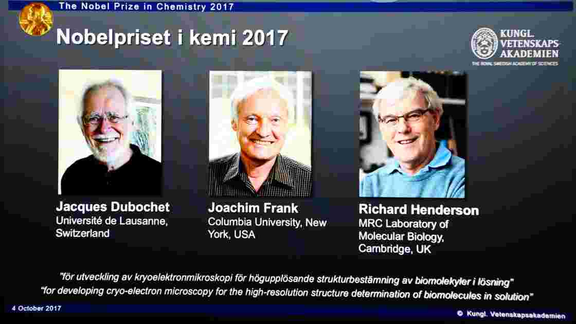 Congeler pour mieux voir: le Nobel de chimie à un Suisse, un Américain et un Britannique