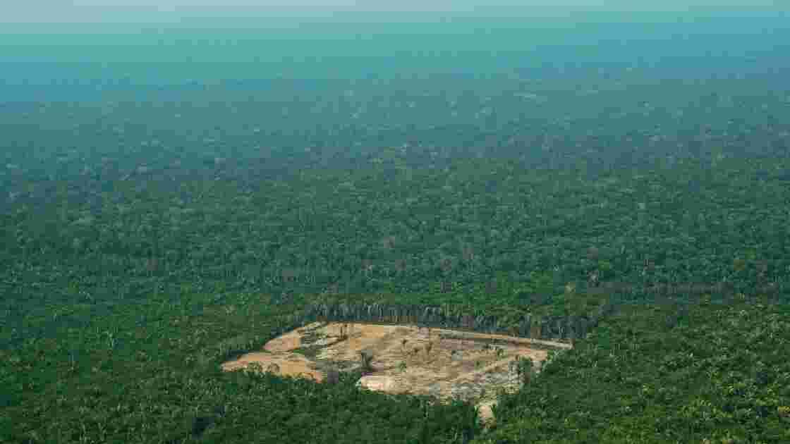 Brésil: l'avenir de l'Amazonie en jeu après l'élection de Bolsonaro