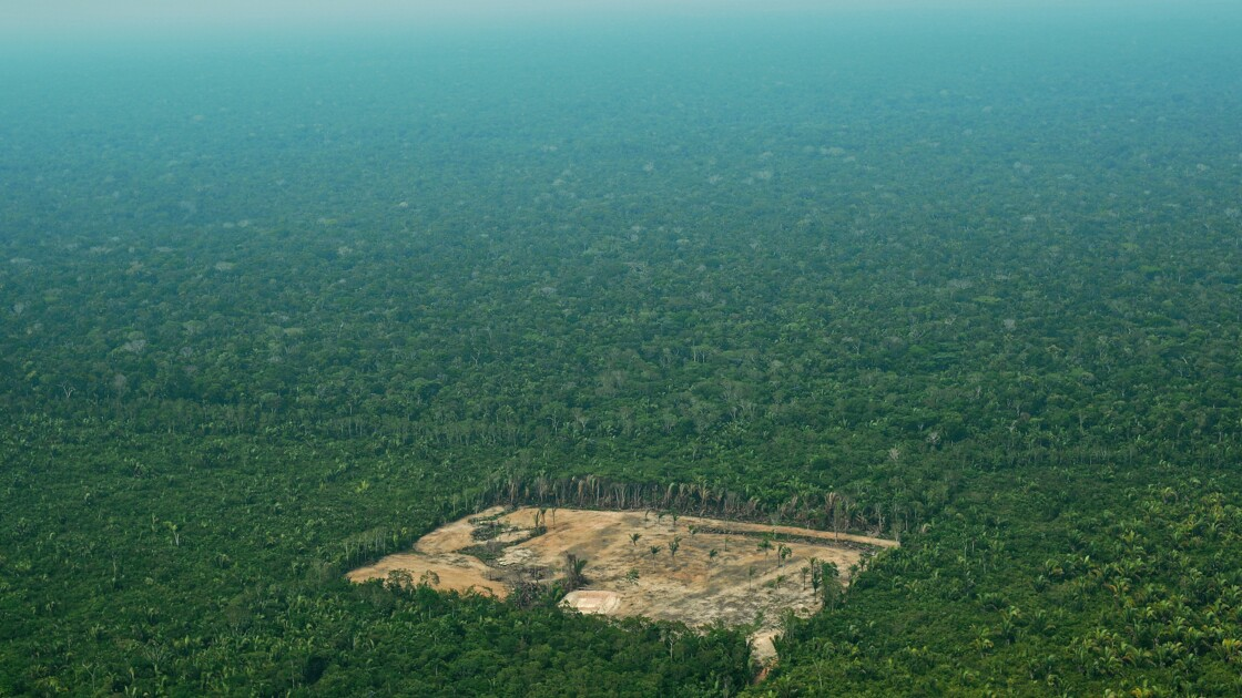 """Amazonie: comment l'humanité peut protéger ses """"espaces vitaux"""""""