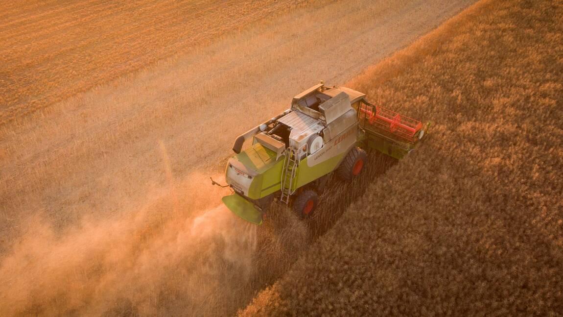 """Des ONG demandent l'annulation d'un arrêté """"inadapté"""" sur les pesticides"""