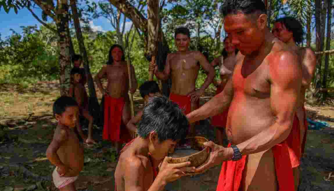 En pleine jungle amazonienne, on trinque au caxiri