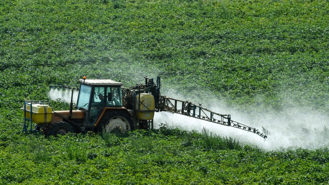 L'usage des pesticides a augmenté de 12% entre 2014 et 2016