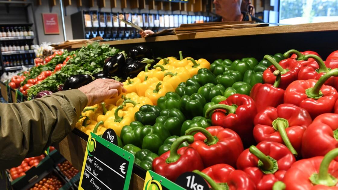 L'Assemblée prolonge le crédit d'impôt pour l'agriculture bio