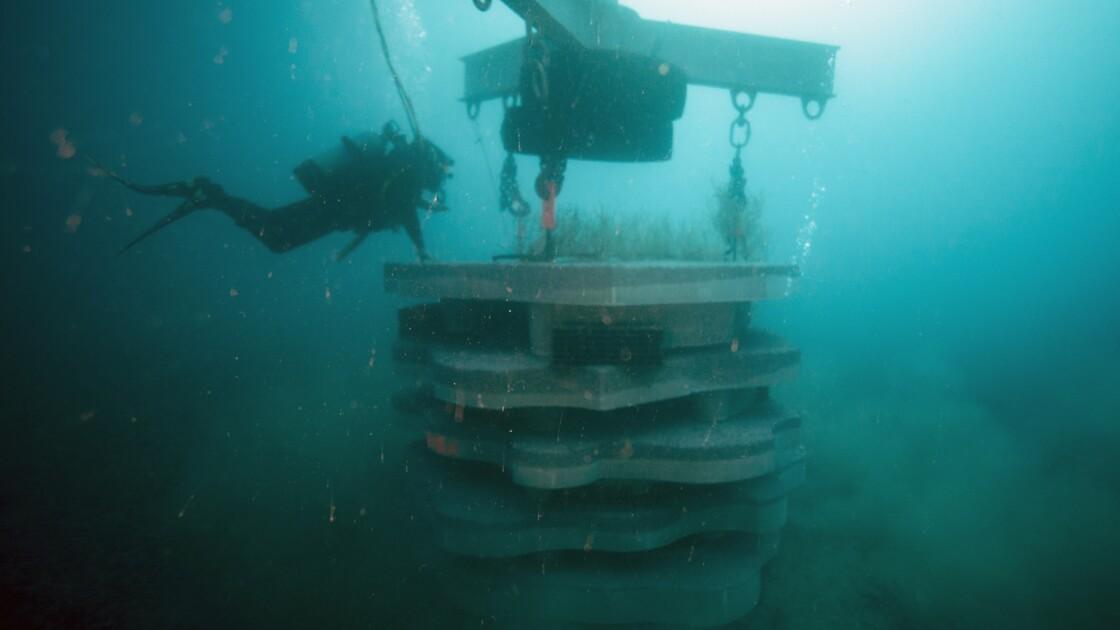 """Des récifs artificiels au débouché d'un ancien égout, """"l'anus"""" de Marseille"""