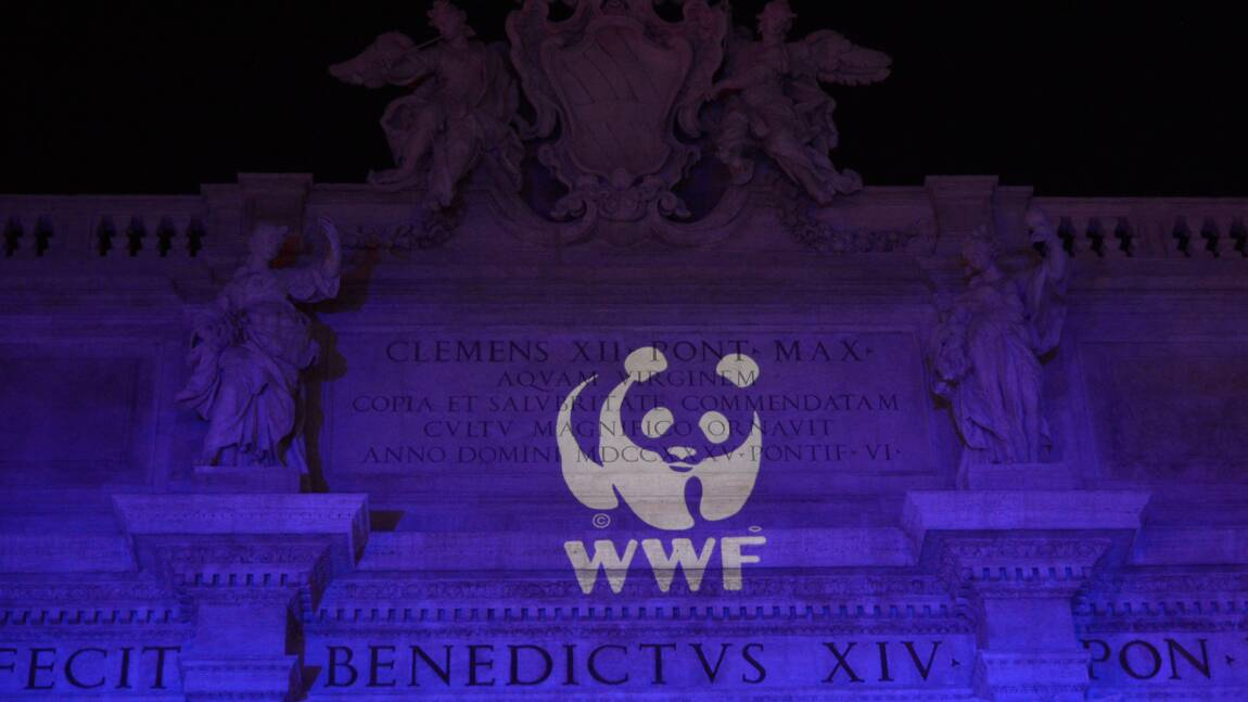 Le patron de WWF veut mettre l'entreprise au service de l'environnement