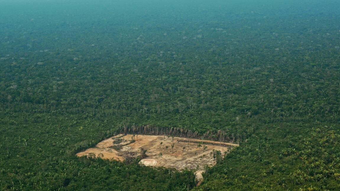 """Déforestation au Brésil: Bolsonaro accusé de """"lâcheté"""""""