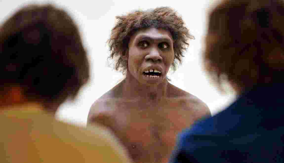 Pouquoi l'homme de Néandertal avait un gros nez