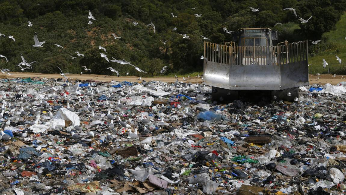 Crise des déchets en Corse : normalisation d'ici trois semaines