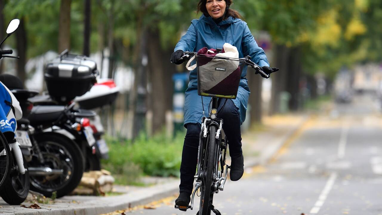 "Automobile: Anne Hidalgo devant la justice de l'UE contre un ""permis de polluer"""