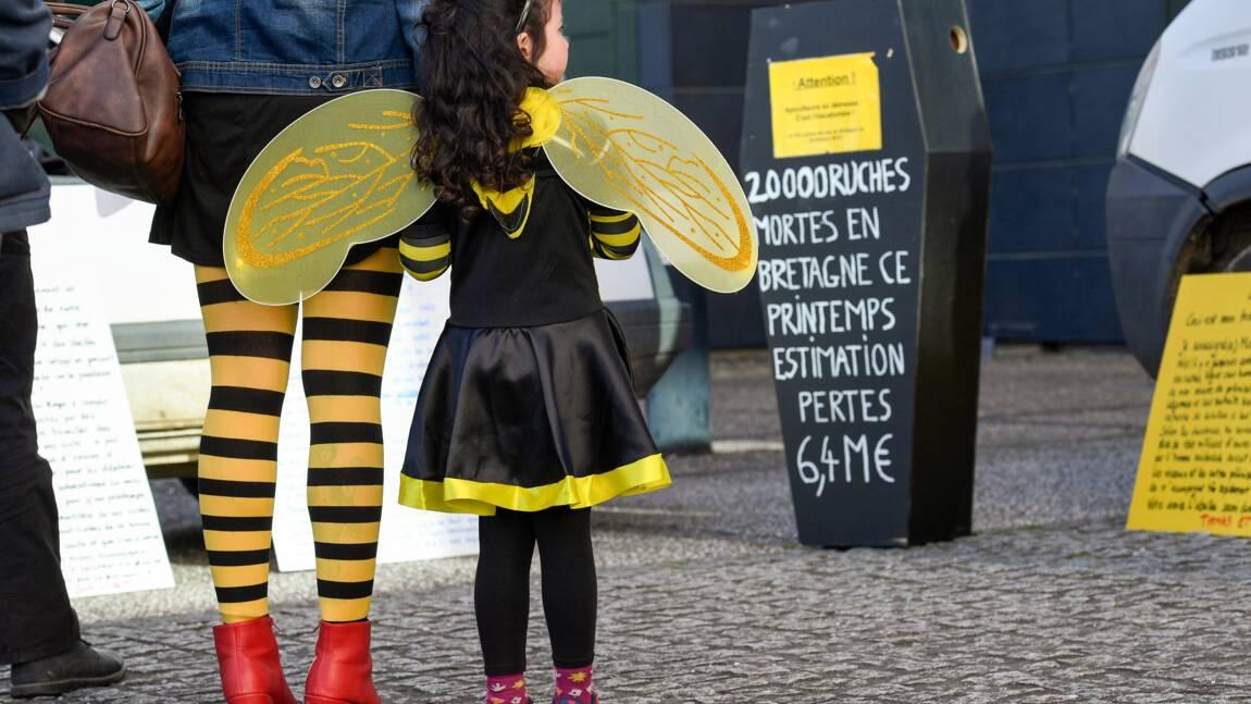"""Nicolas Hulot veut """"éveiller les consciences"""" pour sauver la biodiversité"""