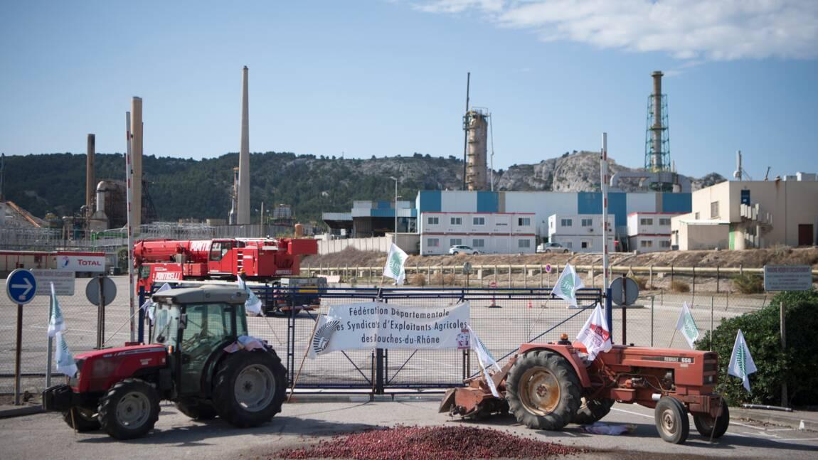 Recours d'ONG contre l'autorisation de la bioraffinerie de La Mède