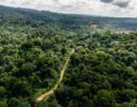 """Guyane: le débat public révèle la """"fracture"""" autour du projet minier Montagne d'or"""