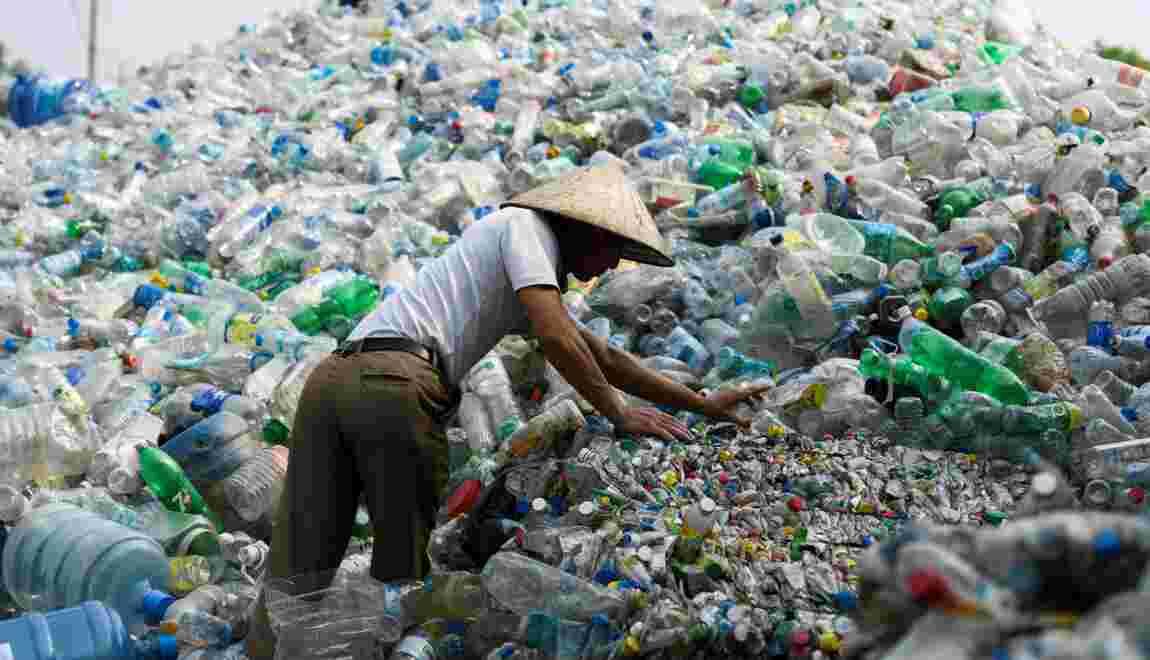 Des micro-plastiques présents dans la chaîne alimentaire humaine