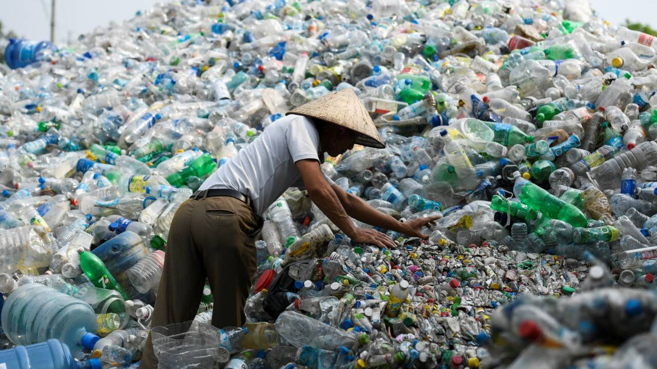 Le plastique biodégradable, utile mais pas miracle contre la pollution