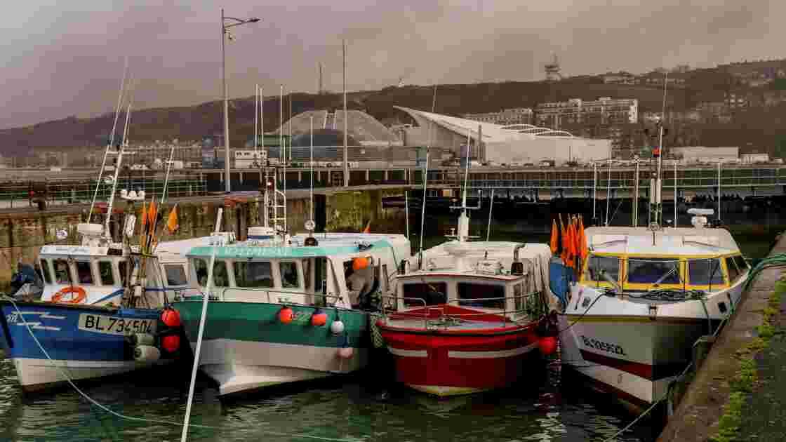 Des pêcheurs vont bloquer plusieurs ports européens pour protester contre la pêche électrique