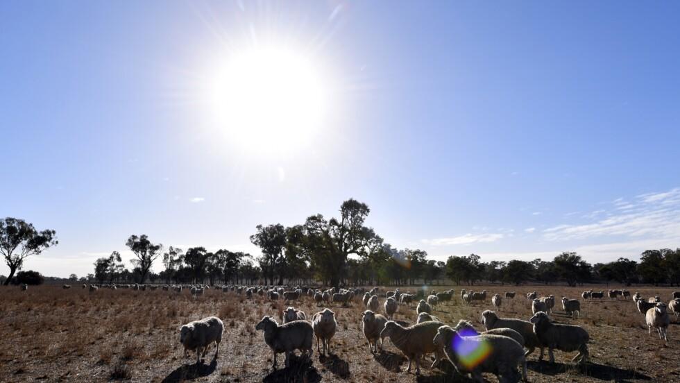 L'Australie enregistre son quatrième record mensuel de chaleur consécutif