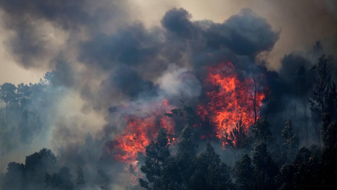 Les incendies en Europe s'aggraveront même si les objectifs climatiques sont tenus