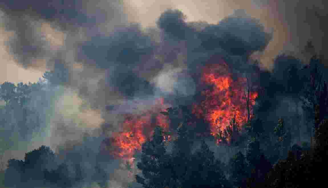 Le réchauffement climatique, catalyseur des feux de forêt