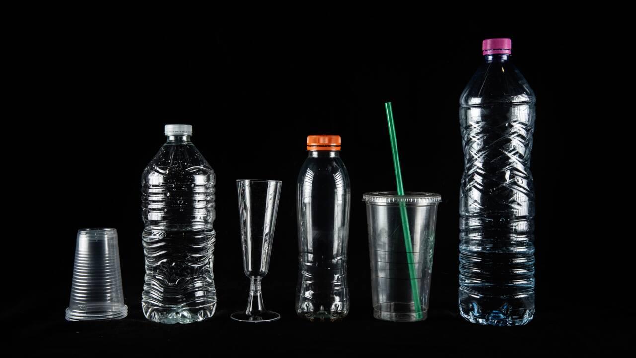 Recyclables, biosourcés, biodégradables: état des lieux des plastiques alternatifs