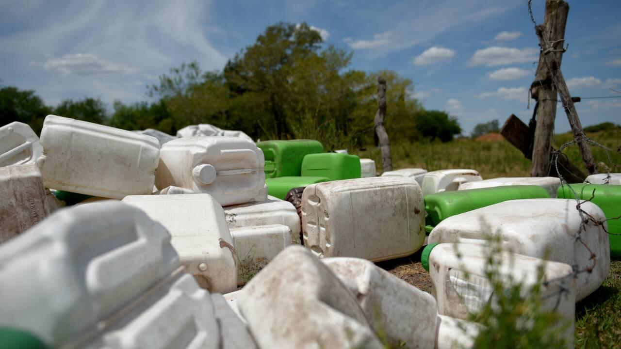 De l'héroïne au glyphosate: trois choses à savoir sur Bayer et Monsanto