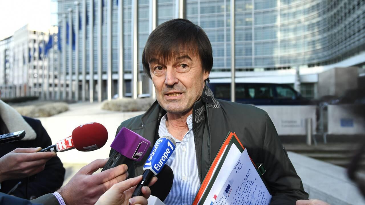 """Départ surprise de Hulot: le mince espoir d'""""un électrochoc"""" pour l'écologie"""