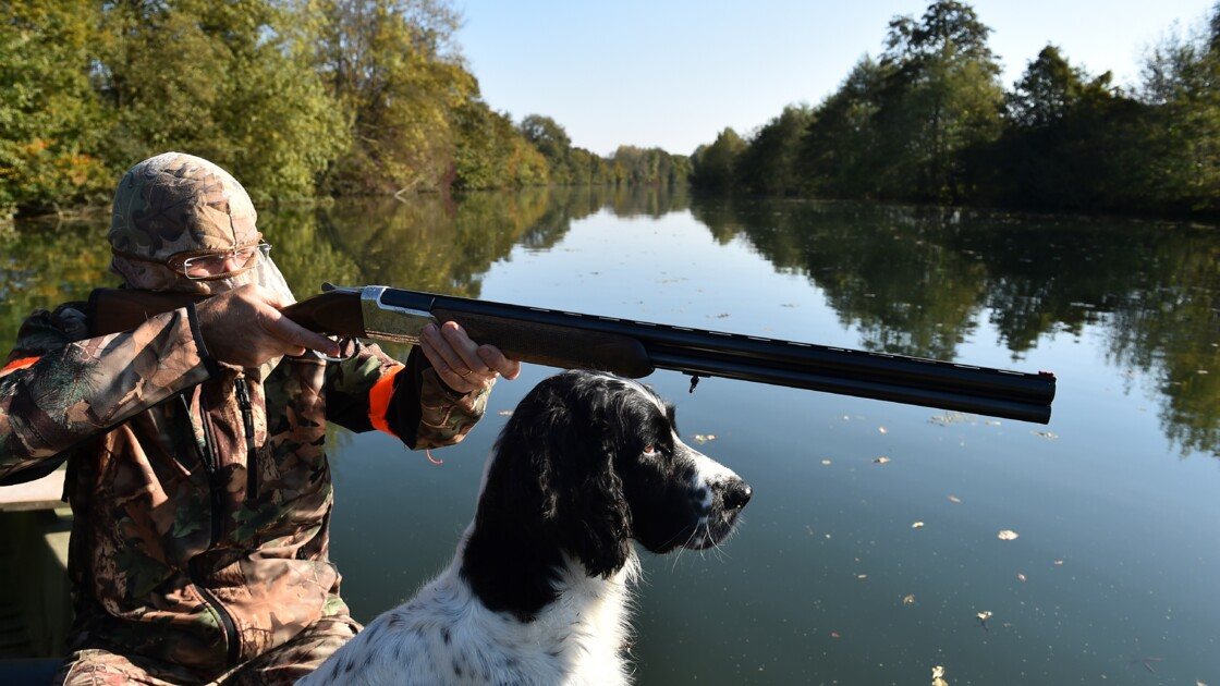 Ouverture dimanche de la chasse dans la moitié sud de la France