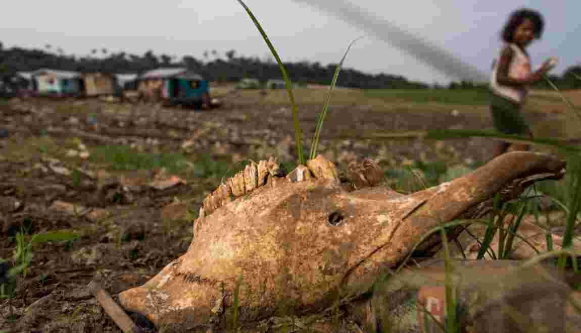 Les caprices du climat font augmenter la faim dans le monde