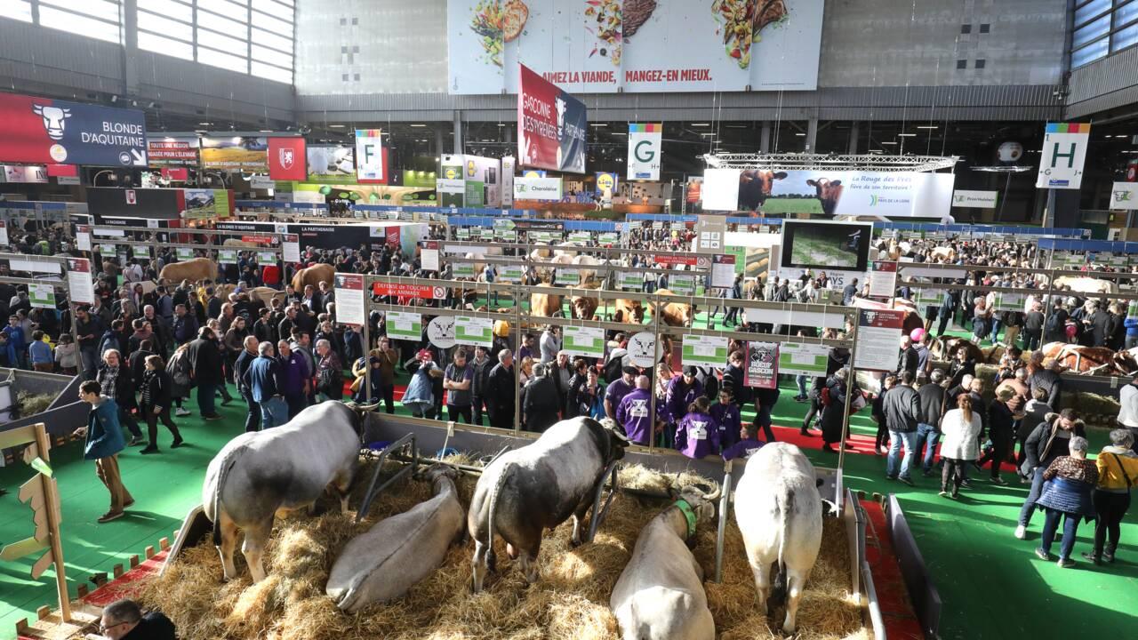 Agriculture: les semenciers en campagne au salon pour séduire l'opinion