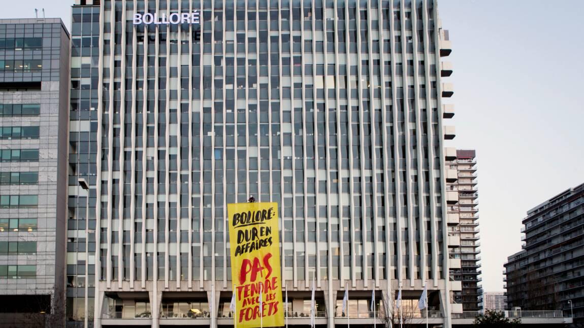 Huile de palme au Cameroun: Bolloré assigné en justice par des ONG et syndicats