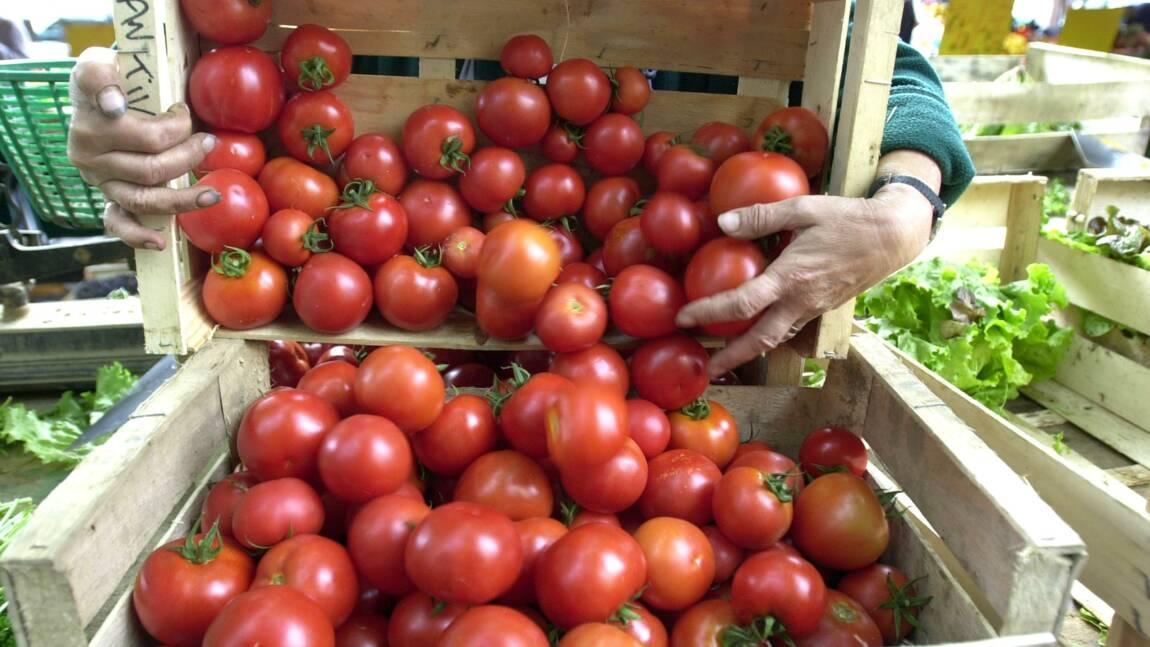 """Des agriculteurs et des chefs cuisiniers s'élèvent contre """"l'industrialisation"""" du bio"""