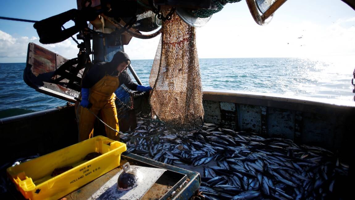 Les pêcheurs veulent soigner leur image et leurs bleus à l'âme