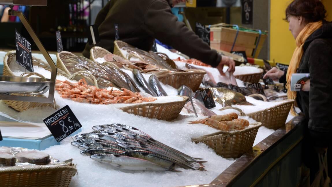 Pêche: quand le changement climatique s'invite dans l'assiette