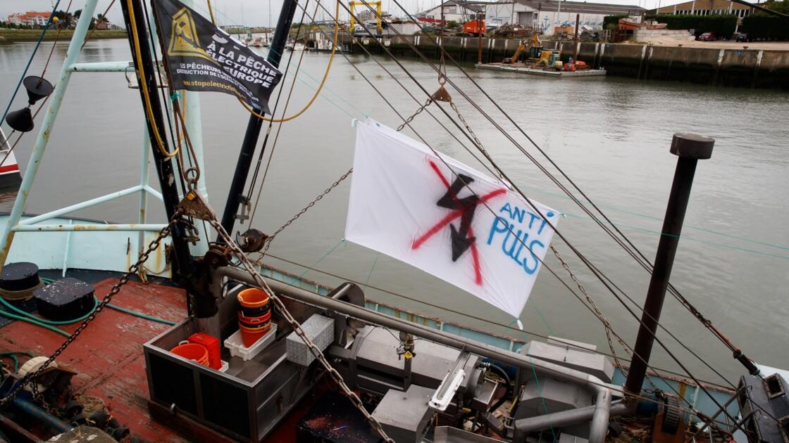 Pourquoi les pêcheurs protestent-ils contre la pêche électrique ?