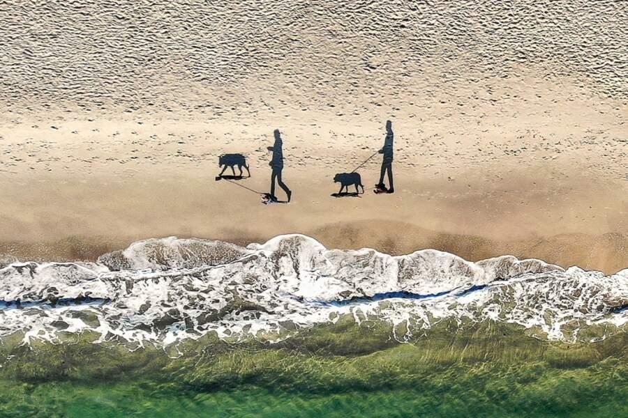 Deux personnes, deux chiens, quatre ombres