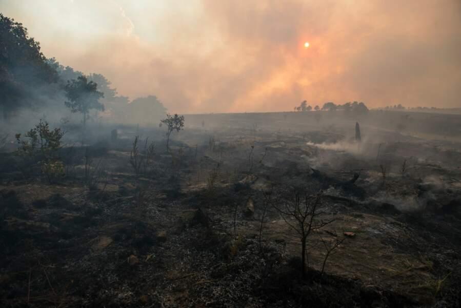 Sécheresse et incendies, des régions s'embrasent