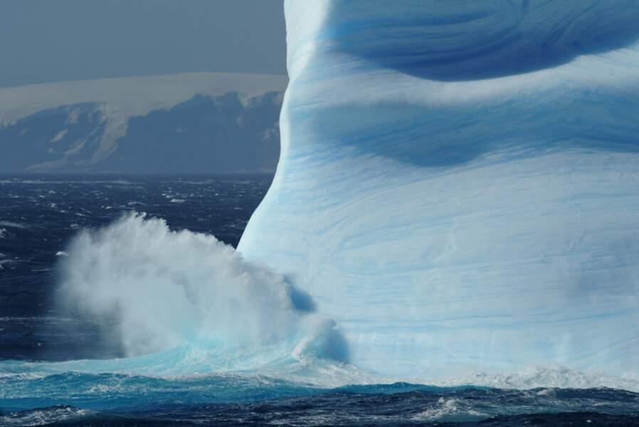 Foyn Harbour - Antarctique