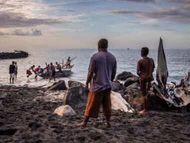 En Indonésie, avec les derniers chasseurs de cachalots