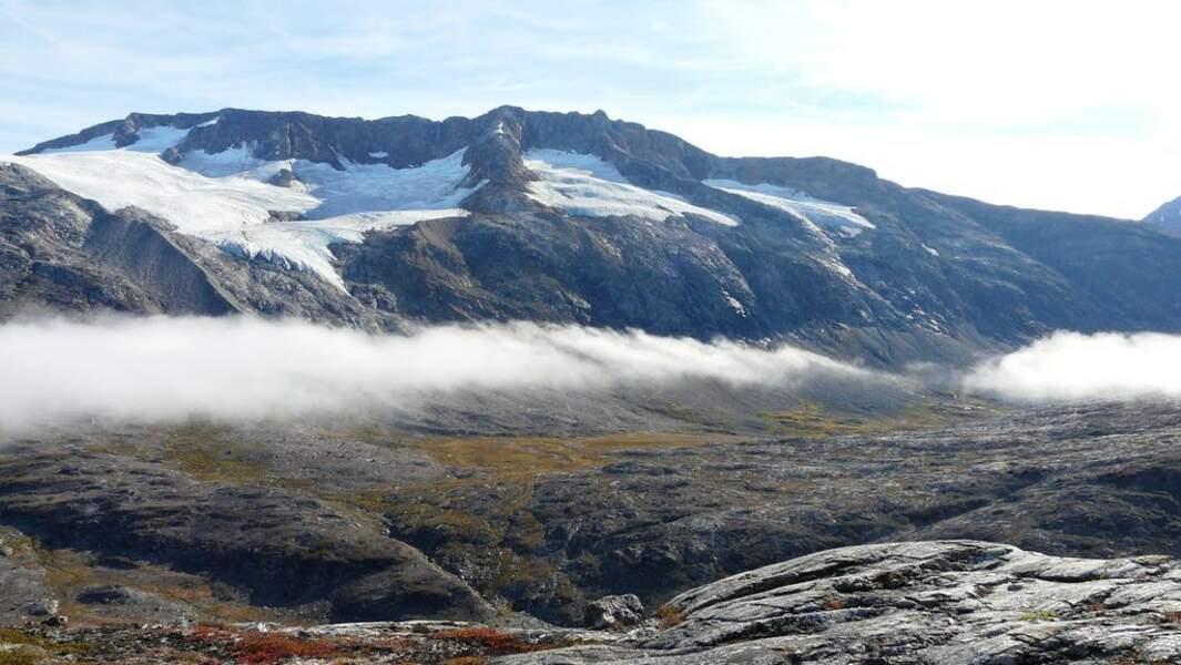 La nature photographiée un jour d'été, période très courte au Grœnland