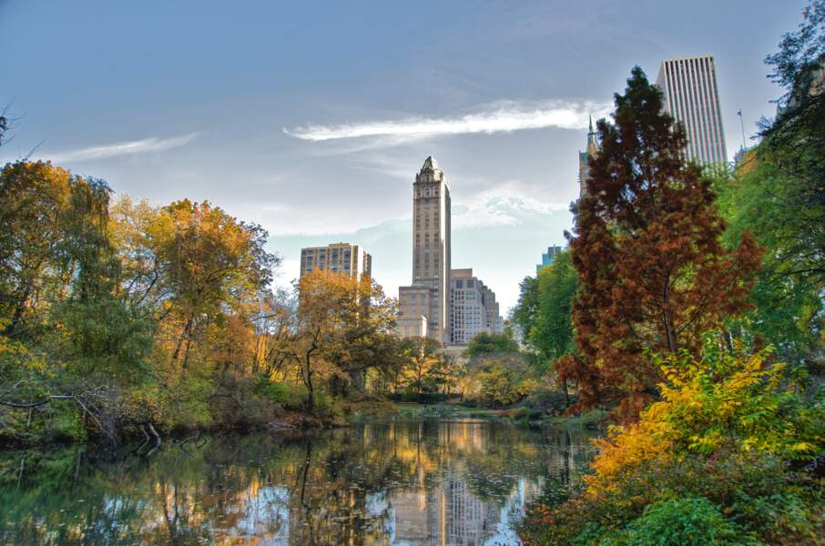 Se détendre en famille dans Central Park